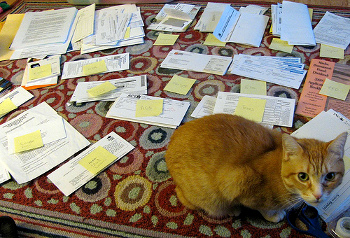 image: piles of papers on floor
